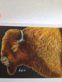 Buffalo By Debbie Hoskins Dunaway Adult ColoringColoring BooksCheetahBuffaloVintage