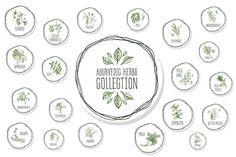 Ayurvedic Herb Collection  @creativework247