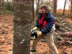 Bob Vila shares a helpful tip you can use when you need to cut down a small tree.