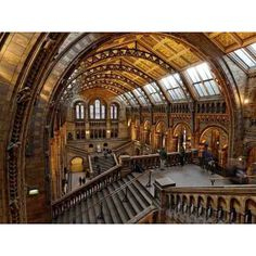 Hey Londoners! Find out more about 'After Hours' at the #naturalhistorymuseum #london on #stylishtreasures  NHM London