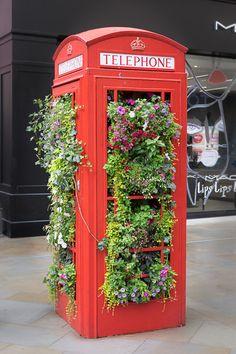 Great use of a redundant phone box. Bath, UK #Bath #Phonebox #UK