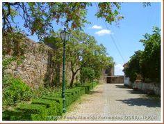Castelo de Castelo Branco