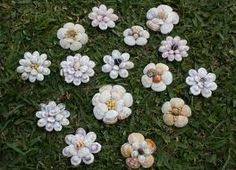How to Make: Shell Flowers