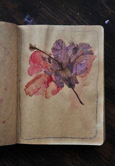 """hibiscus"" by Fernanda Uribe"