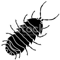 pill bug commonly called roly poly in black and white royalty-free stock vector art