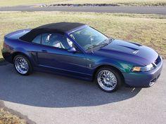 85 best 03 04 ford mustang cobra images mustang cobra ford rh pinterest com