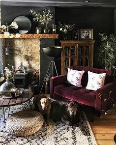 Loved the light in the living room so had to take a quick photo. Penny and Alfie were ready for the shot as always 🤩📷 Thanks for everyone's… Dark Living Rooms, My Living Room, Home And Living, Living Room Decor, Living Spaces, Casa Art Deco, Piece A Vivre, Living Room Inspiration, Home Fashion