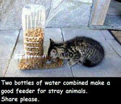 Comedero para mascotas usando material recliclado