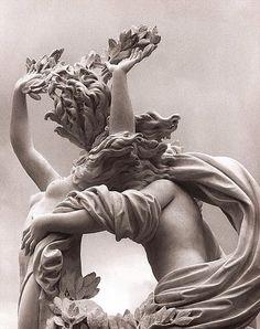 Gian Lorenzo Bernini  (1598-1680) Detail, Apollo and Daphne, 1622-24 Galleria Borghese, Rome templeofapelles: