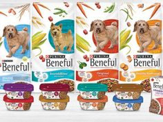 Beneful Lawsuit Alarming Many Dog Owners - Top Dog Tips