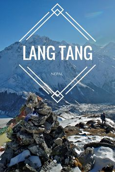 The 4 day Langtang Valley Trek in Nepal brings you gorgeous forests, sweeping Himalaya vistas, peaks to scale, some amazing company, and absolute peace. Travel Guides, Travel Tips, Travel Destinations, Travel Advisor, Wanderlust Travel, Asia Travel, Travel Nepal, Nepal Trekking, Koh Tao