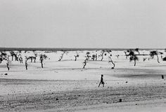 Site of the now dried Lake Faguibine, Mali, Africa,  1985