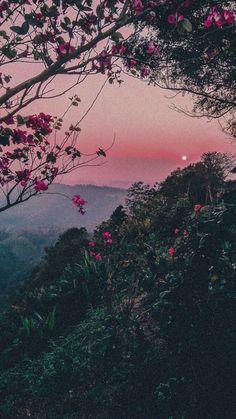 iphone | Tumblr
