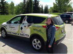 Calgary Humane Society Dog Jog 2014