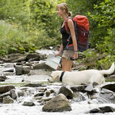 10 Tips for Hiking With Your Dog.