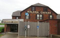 Twin County Dairy (Near Kalona, Iowa), best cheese curds around!