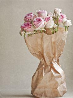 Flores de marzo. Rosas mini