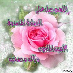 اللهم صل على الصادق المصدوق الأمين المأمون Allah, Good Morning, Rose, Morning Glories, Flowers, Plants, Sequin Embroidery, Bonjour, Islamic