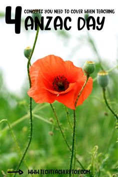 Here are 4 ANZAC Day concepts you need to cover in early primary. Ensure your students understand history concepts when teaching HASS in line with the Australian curriculum. Downloadable teaching resources to help you teach the curriculum in Australia to Foundation Year, Grade One, Grade Two and Grade Three students. Teacher Blogs, Teacher Resources, Primary School Curriculum, Anzac Day, Unit Plan, Australian Curriculum, Year 2, Social Science, Social Studies