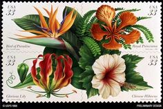Tropical flowers. 33cent. Released 1 May 1999  Google Image Result for http://floridagardener.com/pom/tropical_flowers1.jpg
