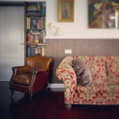 Кресло #Виннер прекрасно смотрится как в классическом интерьере, так и в современном лофте  #кожанноекресло #winner #винтажноекресло #купитькресло #купитьмягкуюмебель #купитьмягкуюмебельоптом #лофт #шале #прованс #винтаж #интерьерноефото #loft #vintage #interior #furniture #купитьмягкуюмебельоптом #купитьмебельотпроизводителя #b2b #домашняяобстановка #дача #уют #Gallery5
