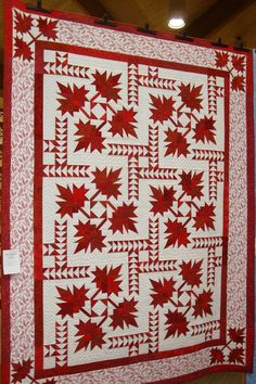 Are you ready for another round of quilt inspiration? The show continues. Canadian Quilts, Quilts Canada, Black And White Quilts, Two Color Quilts, Fall Quilts, Quilt Border, Quilt Making, Quilting Projects, Quilt Blocks