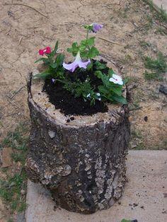 Make It From Scratch: Create a Flower Pot from a Log