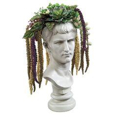 Amazon.com : Design Toscano Bust Planter of Antiquity Statue, Emperor Caligula…