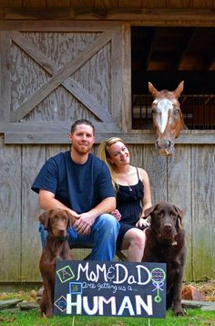 How my boyfriend and I revealed our pregnancy to friends and family! Loved including our pups and horse in the announcement!