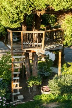 Tree house, a great way to make tree house w/o large branches to help support