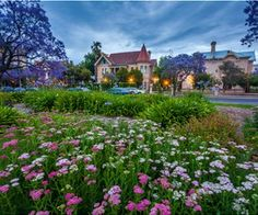 The Garden in Adelaide, South Australia jigsaw puzzle Adelaide South Australia, Puzzle Of The Day, Exotic Flowers, Melbourne, Travel Inspiration, Jigsaw Puzzles, Around The Worlds, Street View, Mansions