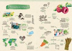 Η Βιοαγρός σε νουμερα *Infographic* Infographic, Blog, Info Graphics, Infographics, Information Design