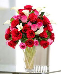 Get flower delivered to your loved ones in Dubai. :) http://www.fnp.ae/gifts/flower-delivery-dubai