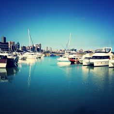 Durban has the best weather! Pretoria, Hampers, South America, African, Weather, River, City, Outdoor, Beautiful