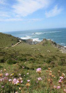 Morte Point to Bull Point walk North Devon