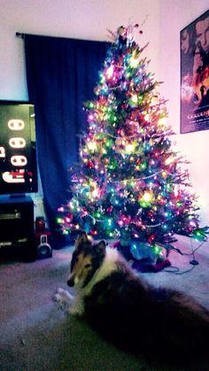 Adam's Christmas Tree in Tuscaloosa with Gracie