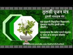 धन-संपदा, वैभव, सुख, समृद्धि की प्राप्ति के लिए तुलसी मंत्र | Tulasi Puj...