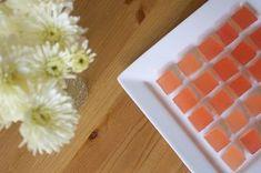 Champagne Rhubarb Jelly Shots Recipe on Food52 recipe on Food52