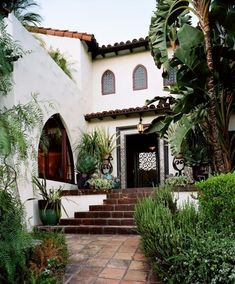 Spanish style home, dark brown white and lots of plants and pots to add color