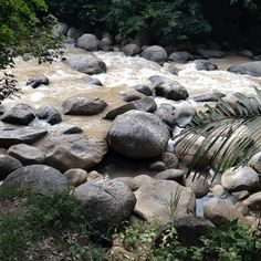 Rapids beside The Waterway Villa, near Bentong, Pahang, #Malaysia. (3 of 3)  #gif #travel #river #nature #originalcontent