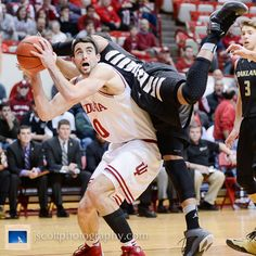 Sheehey -- Indiana's 81-54 win over Oakland at Assembly Hall  #IUCollegeBasketball