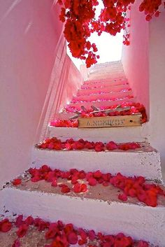 bouganvillea steps, greek Islands