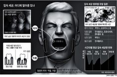 쇼셜닥터스: 하루 3번 이 닦아도 입 안에 500가지 세균 '득실'