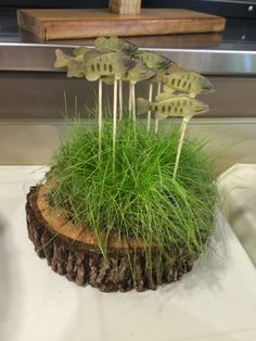 fish center pieces made with grass seed Birthday Themes For Boys, 90th Birthday Parties, Dad Birthday, Retirement Parties, Gone Fishing Party, Fishing Wedding, Fish Centerpiece, Party Centerpieces, Hunting Birthday