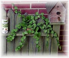 DIY TRAILING PLANT - leaves made with heart punches.see website for the potting bench. Lots of plants Dollhouse Tutorials, Diy Dollhouse, Dollhouse Miniatures, Miniature Tutorials, Barbie Miniatures, Miniature Plants, Miniature Dolls, Miniature Gardens, Fairy Gardens