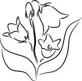 Bellflower seamless Stock Image