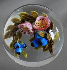 Glass Paperweights for Collectors | Paperweights for Collectors