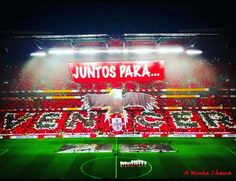 Benfica Wallpaper, Football Fans, My Favorite Things, My Love, World, Fun, Football Squads, Cell Wall, Beautiful Images