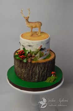 Hunter cake by JarkaSipkova Hunting Birthday Cakes, Dad Birthday Cakes, Grooms Cake Tables, Bible Cake, Deer Cakes, Dad Cake, Decadent Cakes, Christmas Cooking, Fancy Cakes