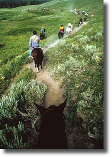 Horseback riding is a great way to see Yellowstone National Park.